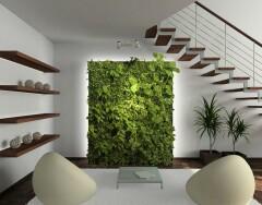 Дешево, но со вкусом: озеленяем и обновляем интерьер при помощи растений