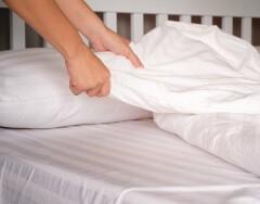 Они есть в каждом доме: как избавиться от постельных клещей подручными средствами