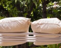 Как просушить постельные принадлежности, чтобы в них не заводились клещи и грибки