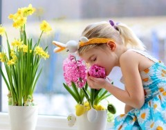 Какие комнатные растения полезно разместить в детской