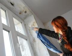 Что делать, если зимой откосы у окна мокнут и покрываются плесенью