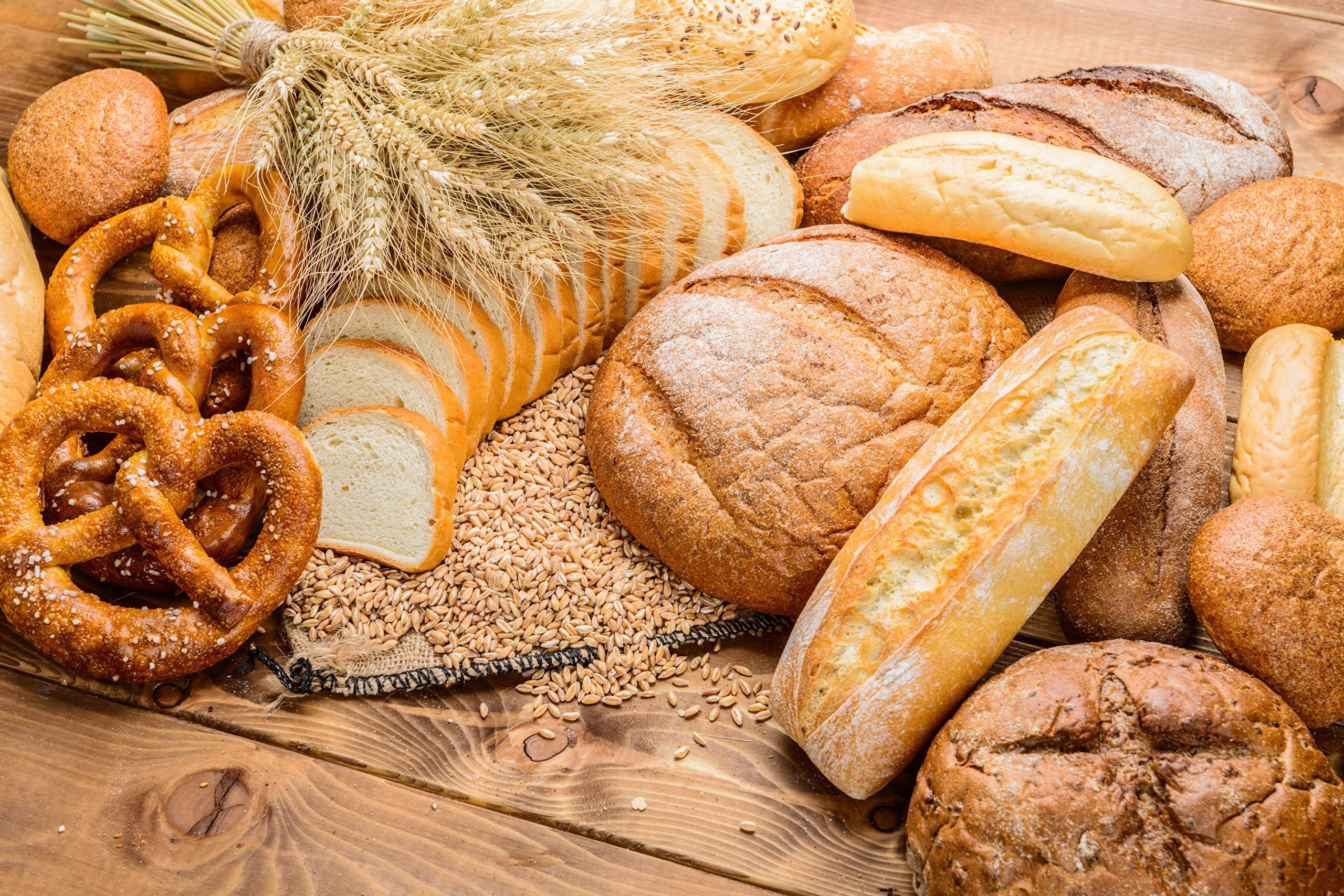 Bread KringleEar botany 490848